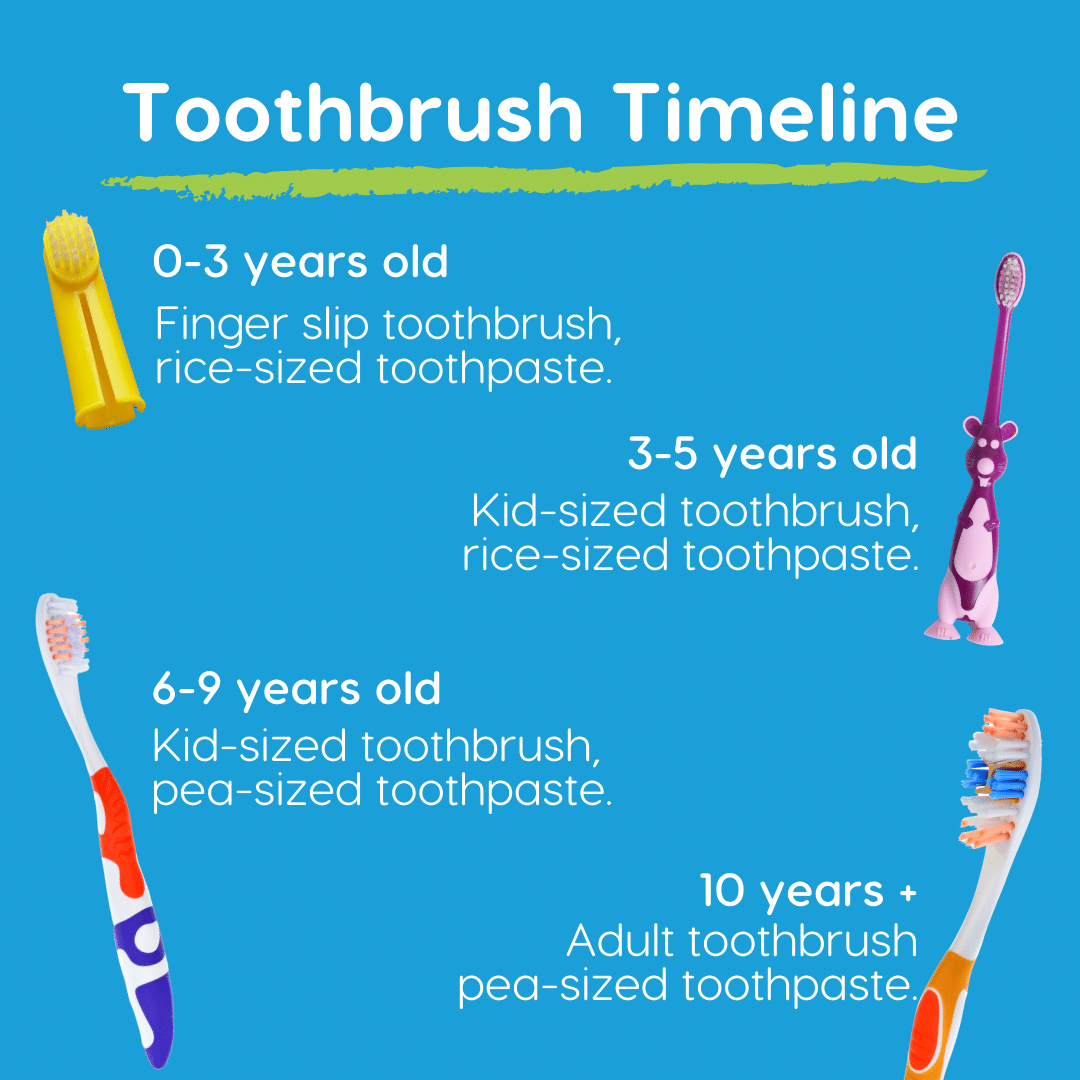 toothbrush timeline for kids